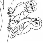 דף צביעה ינשוף 3