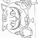 החתול צ'שייר יושב לאכול