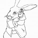 דף צביעה הארנב צמוד לשעונו