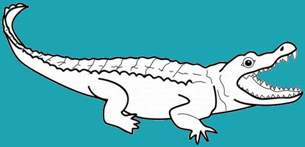 לחצו על דפי הצביעה של תנינים להגדלה ולהדפסה