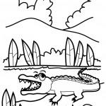 דף צביעה תנין 9