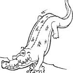 דף צביעה תנין 6