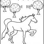 דף צביעה סוס 12