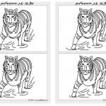 animals_diff10