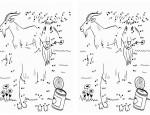 לחצו על דפי חיבור המספרים לתמונה להגדלה ולהדפסה כנסו לדפי צביעה בעלי חיים   כנסו לסרטון מלך האריות  כנסו לדפי צביעה מלך האריות