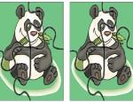 לחצו על הפאזלים להגדלה ולהדפסה כנסו לדפי צביעה בעלי חיים    כנסו לסרטון מדגסקר   כנסו לדפי צביעה מדגסקר