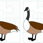 animals_puzzle23