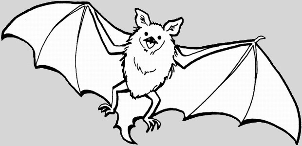 לחצו על דפי הצביעה של עטלפים להגדלה ולהדפסה