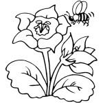 דף צביעה דבורה 3