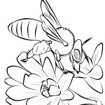 דף צביעה דבורה 2