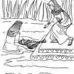 דף צביעה בת פרעה מוציא את משה מהמים
