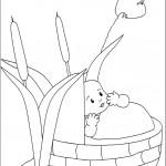 דף צביעה משה התינוק בתיבה
