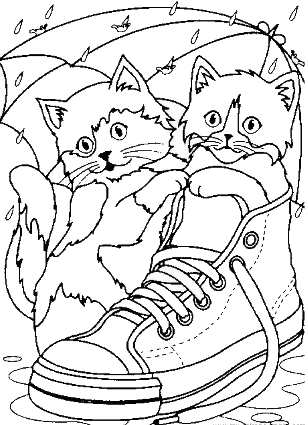 Image Result For Pete Cat Coloring Page Free Parrot