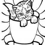 דף צביעה גור חתולים בכוס