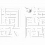 cats_maze4