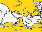 לחצו על דפי הצביעה של תרנגולים להגדלה ולהדפסה