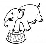 דף צביעה פיל מופיע בקרקס