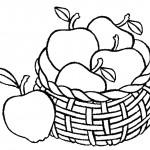 דף צביעה סלסילת תפוחי עץ