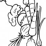 דף צביעה ירקות 2