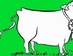 לחצו על דפי הצביעה של פרות להגדלה ולהדפסה