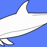 דולפין דפי צביעה