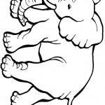 דף צביעה פיל 3