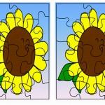 flower puzzle2