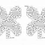 flower_maze5
