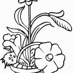 דף צביעה פרחים 20