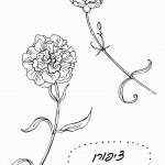 דף צביעה פרחים 12