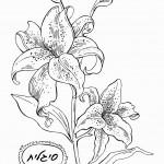 דף צביעה פרחים 7