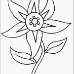 דף צביעה פרחים 60