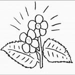 דף צביעה פרחים 57