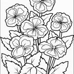 דף צביעה פרחים 46
