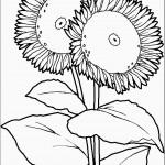 דף צביעה פרחים 41