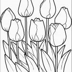 דף צביעה פרחים 40