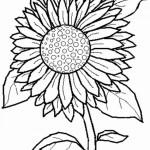דף צביעה פרחים 32
