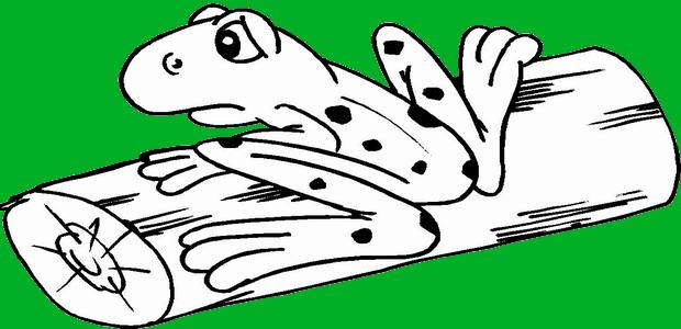 לחצו על דפי הצביעה של צפרדעים להגדלה ולהדפסה