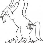 דף צביעה סוס 6