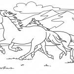 שני סוסים דוהים בין ההרים