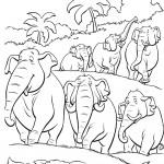 דף צביעה סיירת הפילים בג'ונגל