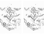 לחצו על דפי חיבור המספרים לתמונה להגדלה ולהדפסה כנסו לדפי צביעהקסמים