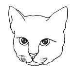 דף צביעה מסכת חתול