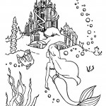 אריאל ופלאונדר שוחים לארמון