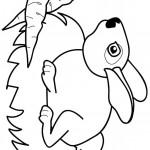 דף צביעה ארנב 5