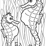 דף צביעה סוס ים 14