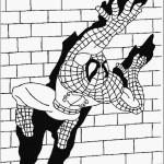 דף צביעה ספיידרמן 49