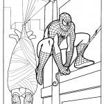 דף צביעה ספיידרמן 17