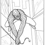דף צביעה ספיידרמן 15
