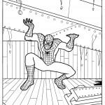 דף צביעה ספיידרמן 14